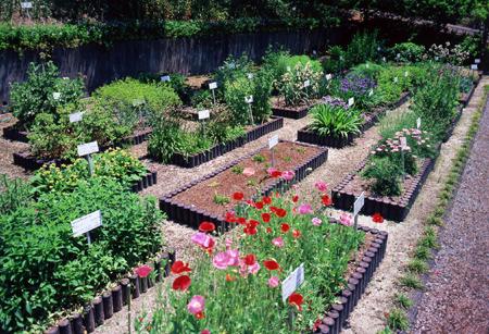 Takeda Garden for Medicinal Plant Conservation Kyoto